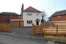 3 bedroom Detached property to rent in Fir Street, Sedgley...
