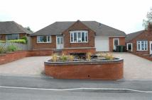 Ascot Drive Detached Bungalow to rent
