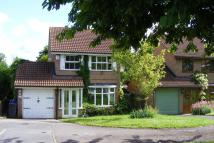 Detached home to rent in Hawfinch, Wilnecote