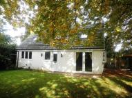 Detached Bungalow to rent in 84 CHESTNUT AVENUE...