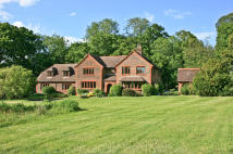 7 bedroom Detached house in Pine Grove, Chichester