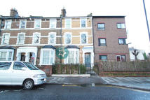 Northwold Road Flat to rent