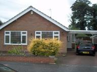 Detached Bungalow in Ivy Close, Watnall...