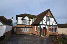 Studio flat to rent in Chestnut Avenue, Epsom...
