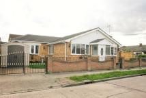 Detached Bungalow in Thisselt Road...