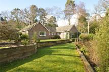 Detached Bungalow for sale in Huntsbottom Lane...