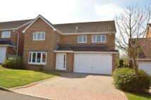 4 bedroom Detached house in Wetherdown, PETERSFIELD...