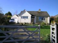 Detached Bungalow in Smallridge, Axminster...