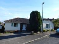 Detached Bungalow for sale in Knowles Drive, Colyton...