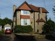 Detached house to rent in Beechwood Grove, Shipley...