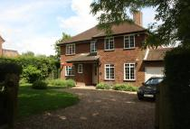 Detached house to rent in Burnham Avenue...