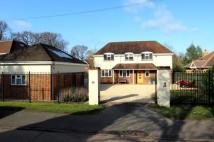 5 bed Detached house for sale in Chestnut Road...