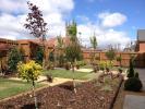 Showhome Garden