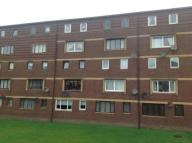 3 bed Flat to rent in Braehead Road...