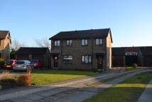 3 bed semi detached house in Burntbroom Drive...