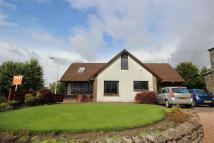 4 bed Detached house in Belhaven, Station Road,...