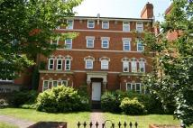 Prospect Place Apartment to rent