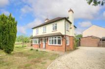 4 bed Detached home for sale in Main Road, Duston...