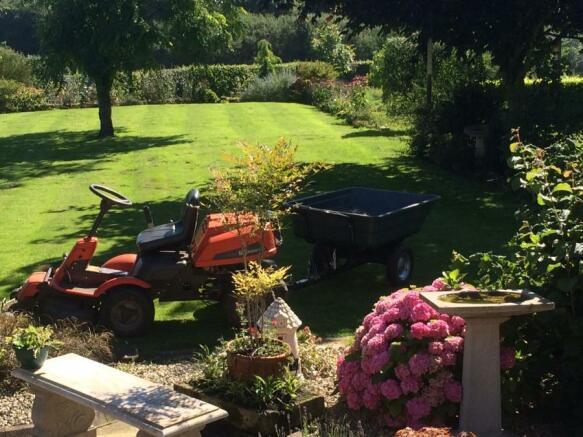 Kitchen Lawn