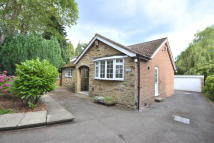 Bungalow to rent in Alwoodley Lane...