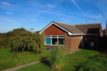 Detached Bungalow in Seven Sisters Road...