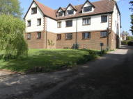Flat to rent in Hailsham Road...