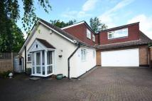 5 bedroom home to rent in Chandos Avenue...