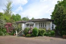 Bungalow for sale in Camlet Way, Hadley Wood...
