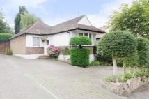 2 bed Bungalow in Milton Avenue...