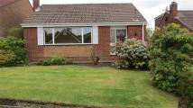 Bungalow to rent in Belmont View, Bolton