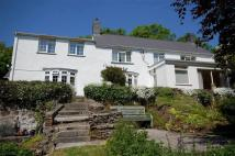 Detached home for sale in Stepaside, Stepaside