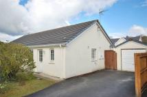 2 bed Semi-Detached Bungalow in The Grove, Begelly
