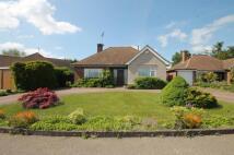 3 bedroom Detached Bungalow in Rose Lawn, Bushey Heath...