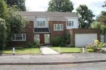 Detached home to rent in Hive Close, Bushey Heath...