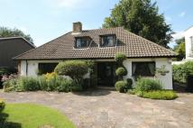 4 bed Detached Bungalow for sale in Grange Road, Bushey...