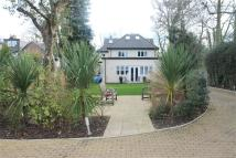 Duplex for sale in Heath End, Common Road...
