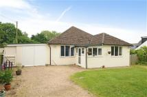 Detached Bungalow in Paice Lane, Medstead...