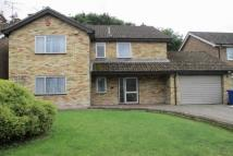 4 bed Detached house to rent in Hornbeam Road...