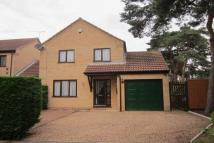 Detached property in Broom Walk, Beck Row...