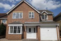 Falcon Way Detached house to rent
