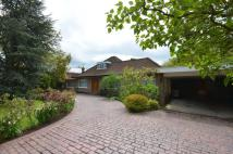 Coombe Park property for sale