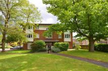 Kingsworthy Close Flat to rent