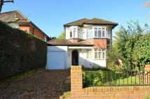 Imber Grove house to rent