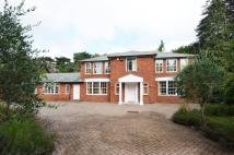 Coombe Hill Road house to rent