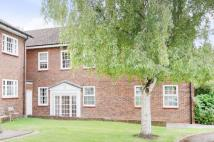 Flat to rent in Little Orchard Close...