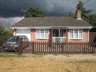Bungalow to rent in Samphire Cottage