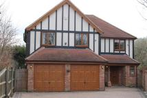 5 bed Detached property to rent in Chelmer Road, Chelmsford