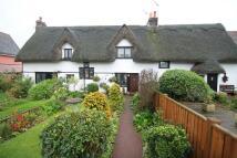 Cottage to rent in Main Road, Boreham