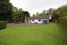 3 bedroom Detached property in Cove Road, Silverdale