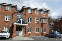 Pear Tree Court Flat to rent